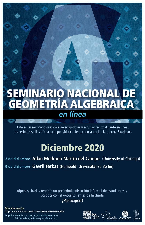 Seminario Nacional de Geometría Algebraica en línea: Diciembre