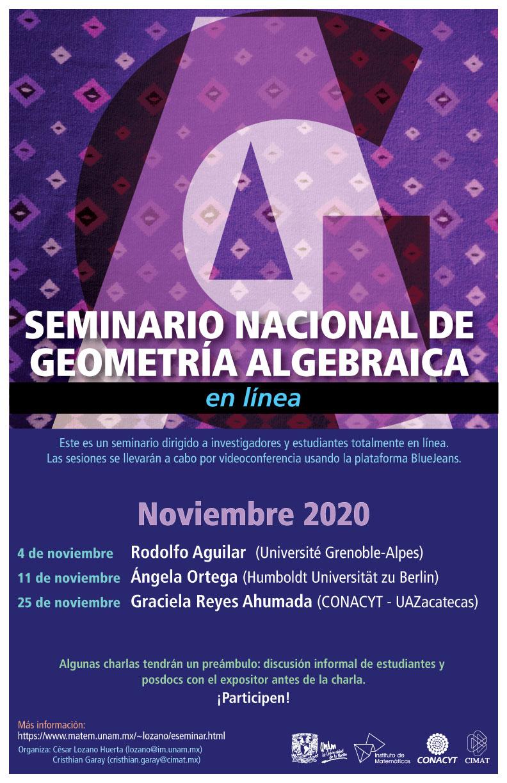 Seminario Nacional de Geometría Algebraica en línea: Noviembre