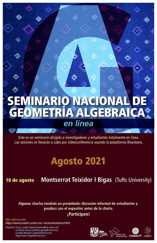 Seminario Nacional de Geometría Algebraica en línea: agosto