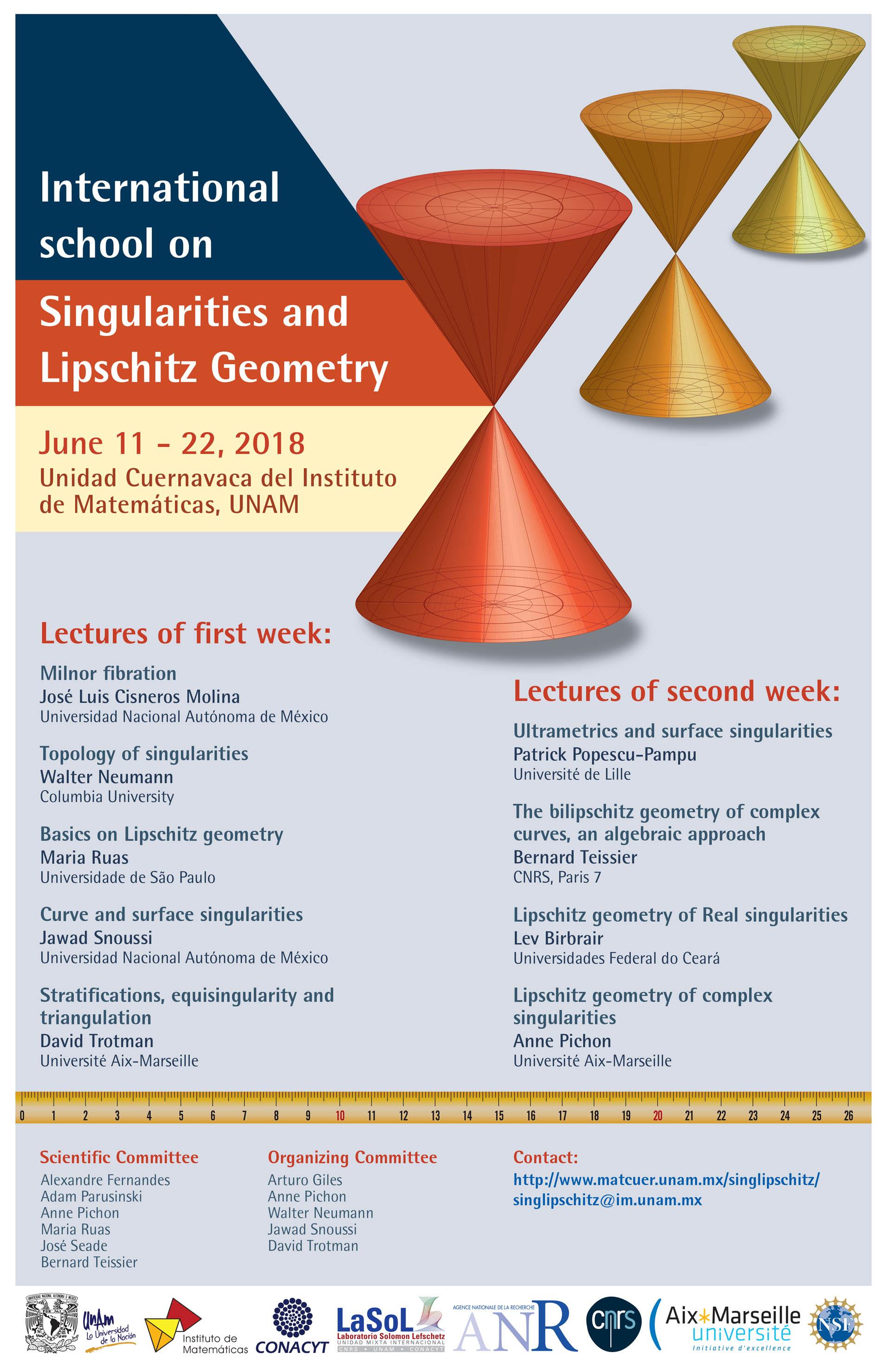 International School on Singularities and Lipschitz Geometry