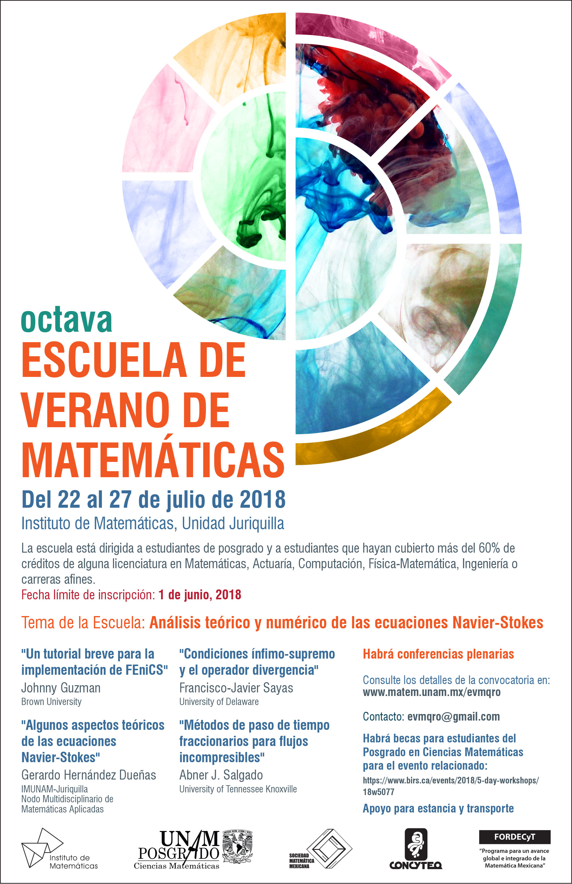 Octava Escuela de Verano de Matemáticas